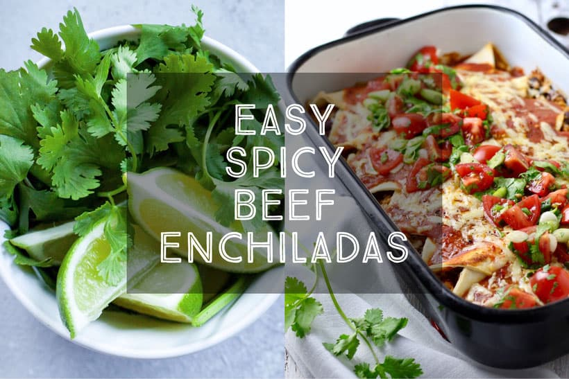 Easy Spicy Beef Enchiladas