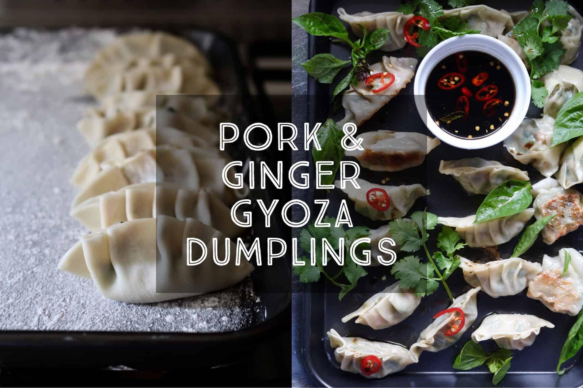 pork-spinach-ginger-gyoza