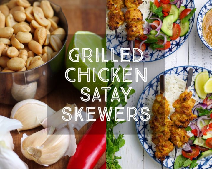 Grilled Chicken Satay Skewers