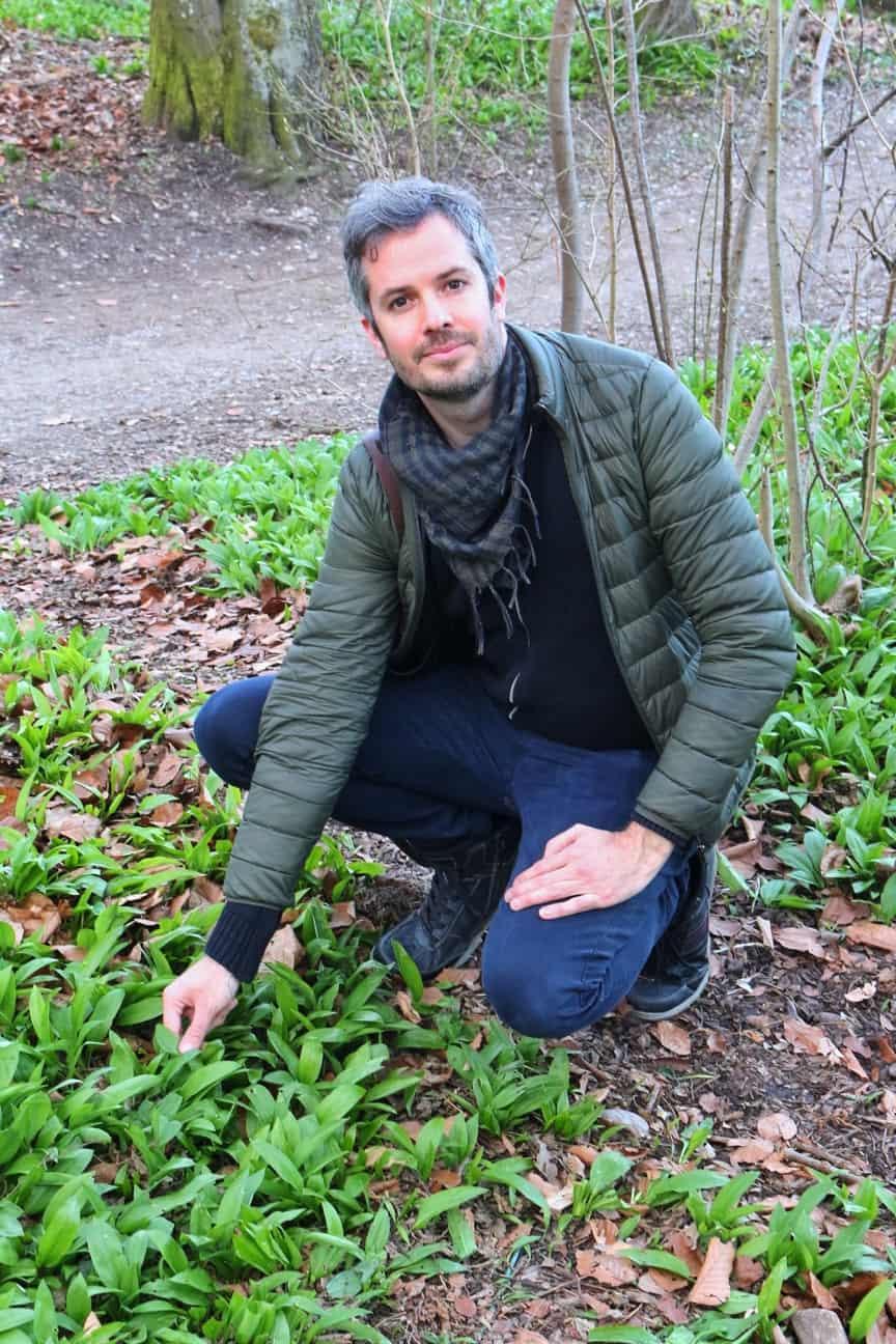 Jay with wild garlic