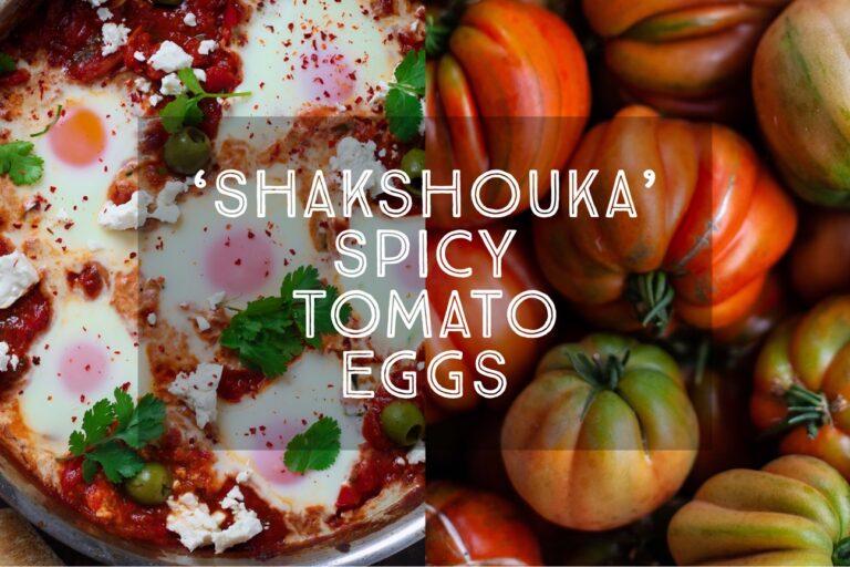 Shakshouka Spicy Tomato Eggs